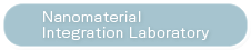 Nanomaterials Integration Lab